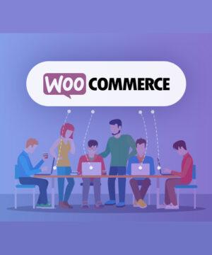 Разработка интернет магазина Wordpress + WooCommerce