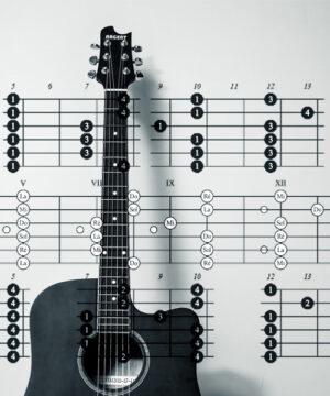 Основы музыкальной теории для гитаристов